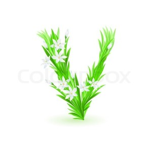 2805453-600979-one-letter-of-spring-flowers-alphabet-v-illustration-on-white-background