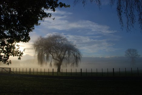 newzealand-northisland-waikato-1757670-o