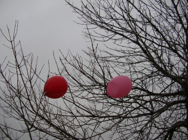 balloons_outdoors_cloudy_4298_o