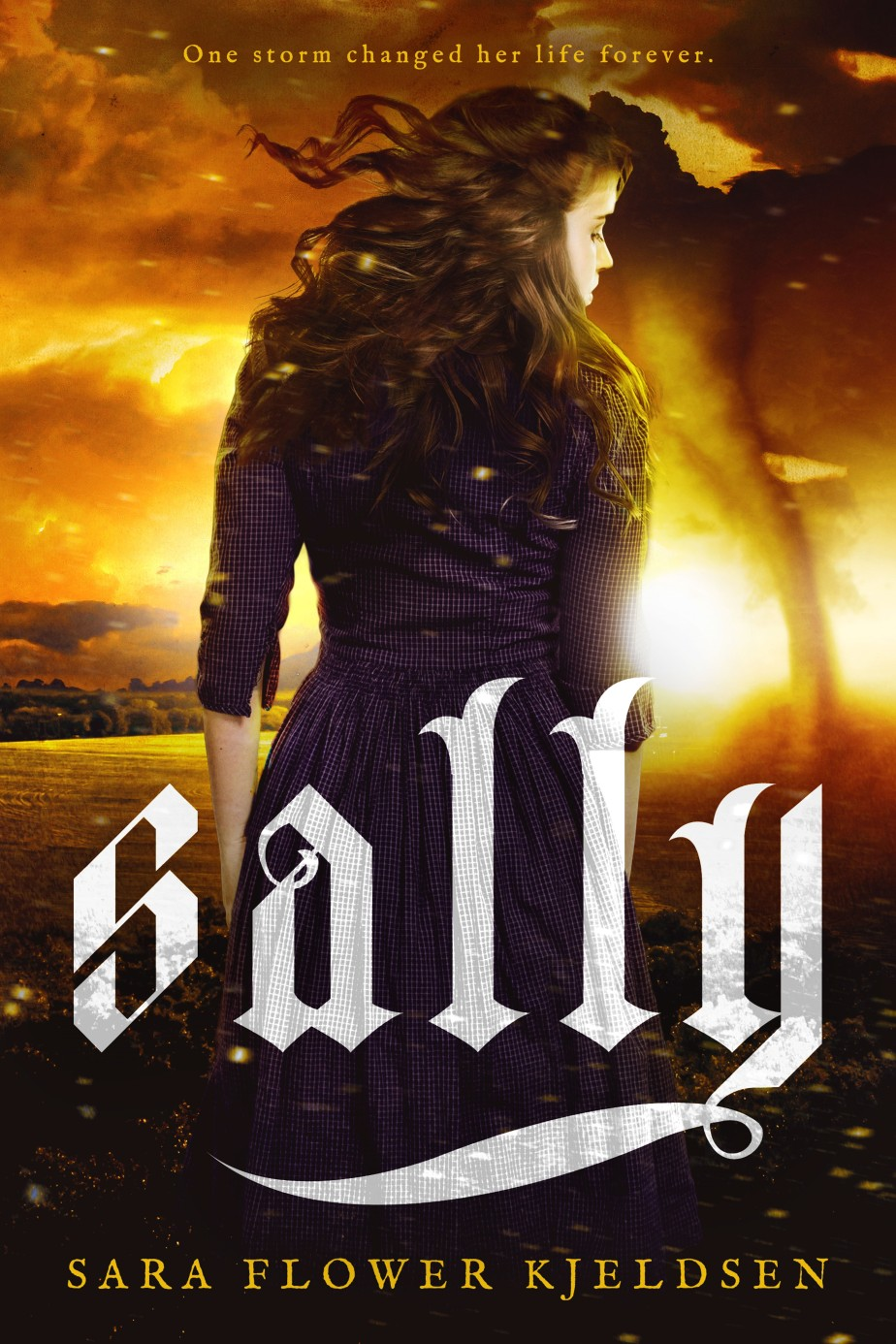 Sally.Ebook.v2-Amazon (1).jpg